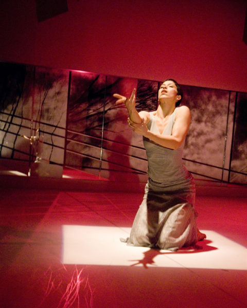 STRUCK (2008) Choreographer: Brent Lott Dancer: Natasha Torres-Garner Photographer: Ryan Michael Fennessy